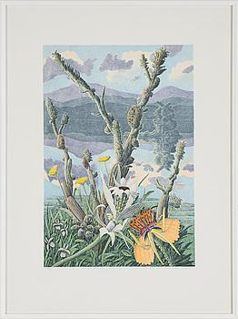 KARL AXEL PEHRSON, litografi, signerad, daterad -89 och numrerad, 192/385.