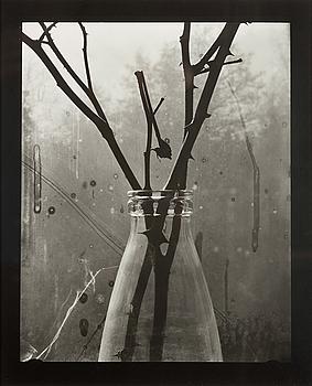GUNNAR SMOLIANSKY, gelatinsilverfotografi, a tergo signerat och daterat 1981.