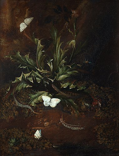 Otto marseus van schrieck attributed to, still life with thistle, lizards, snails and butterflies.