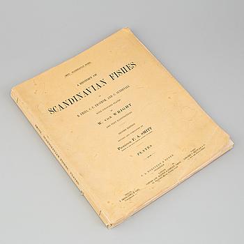 "BOK, ""Scandinavian Fishes"", B Fries, C.U Ekström, C Sundevall. 1895, No 0170."