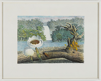KARL AXEL PEHRSON, lithograph in colours, signed and dated -76, numbered 160/350.
