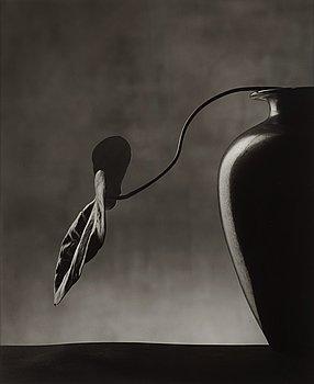 """128. CHRISTIAN COIGNY, """"Vase Noir"""", 1988."""
