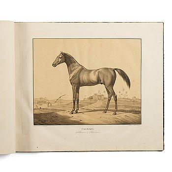 171. BOK: Rudolf Kuntz: Abbildungen Königlich Württembergischer Gestütts Pferde  von orientalischen Racen. [1-3].