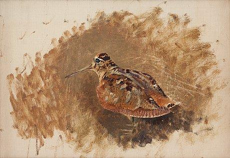Bruno liljefors, eurasian woodcock (scolopax rusticola).